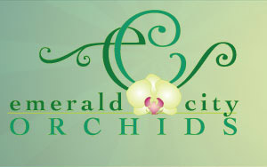 Emerald City Orchids